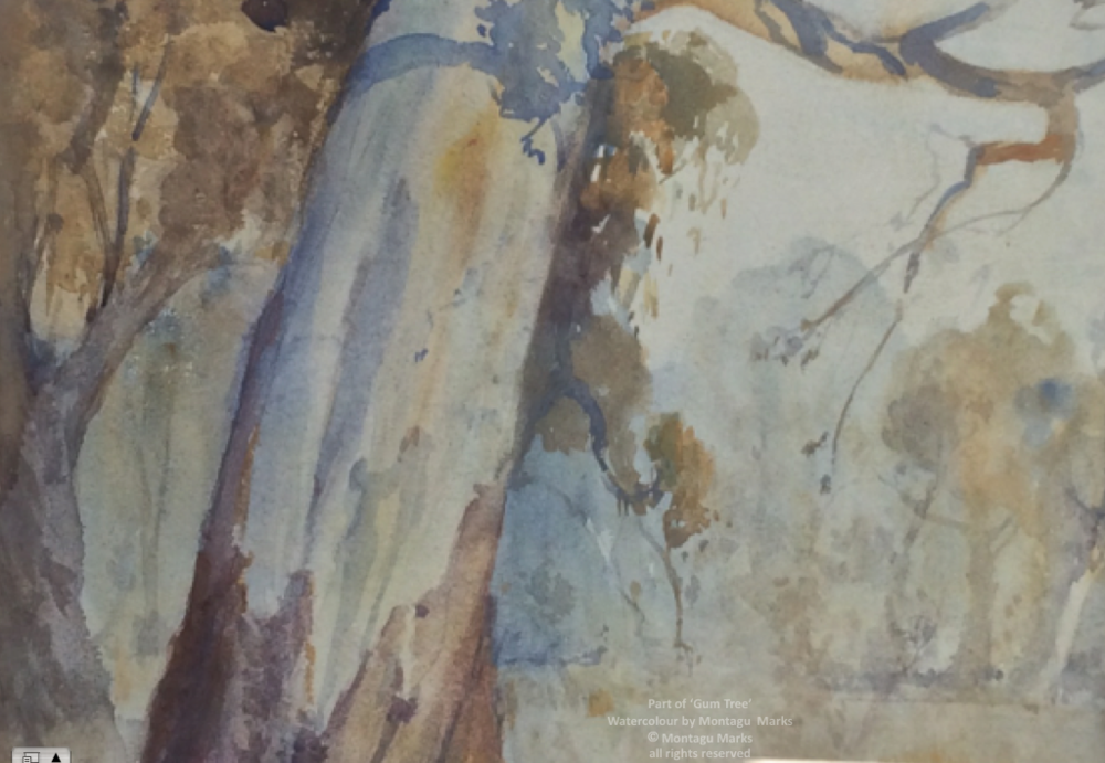 Part of the 'Gum Tree' by Montagu Marks. Copyright Montagu Marks' Estate. all rights reserved.