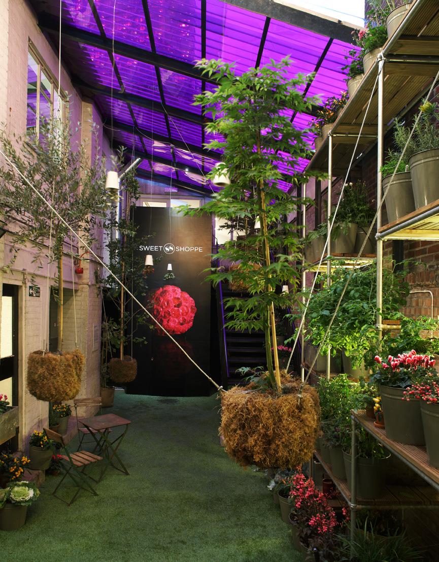 Sweet Shoppe 008 garden.jpg