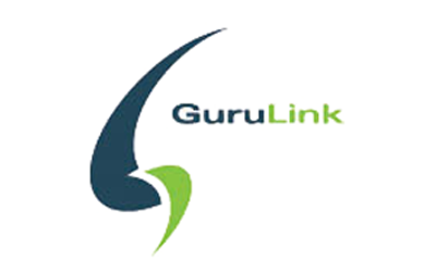 """""""We quickly found tens of thousands of dollars in fees that we would not otherwise have found, delivering a significant ROI."""" –Drew Lindsay, CEO, GuruLink"""
