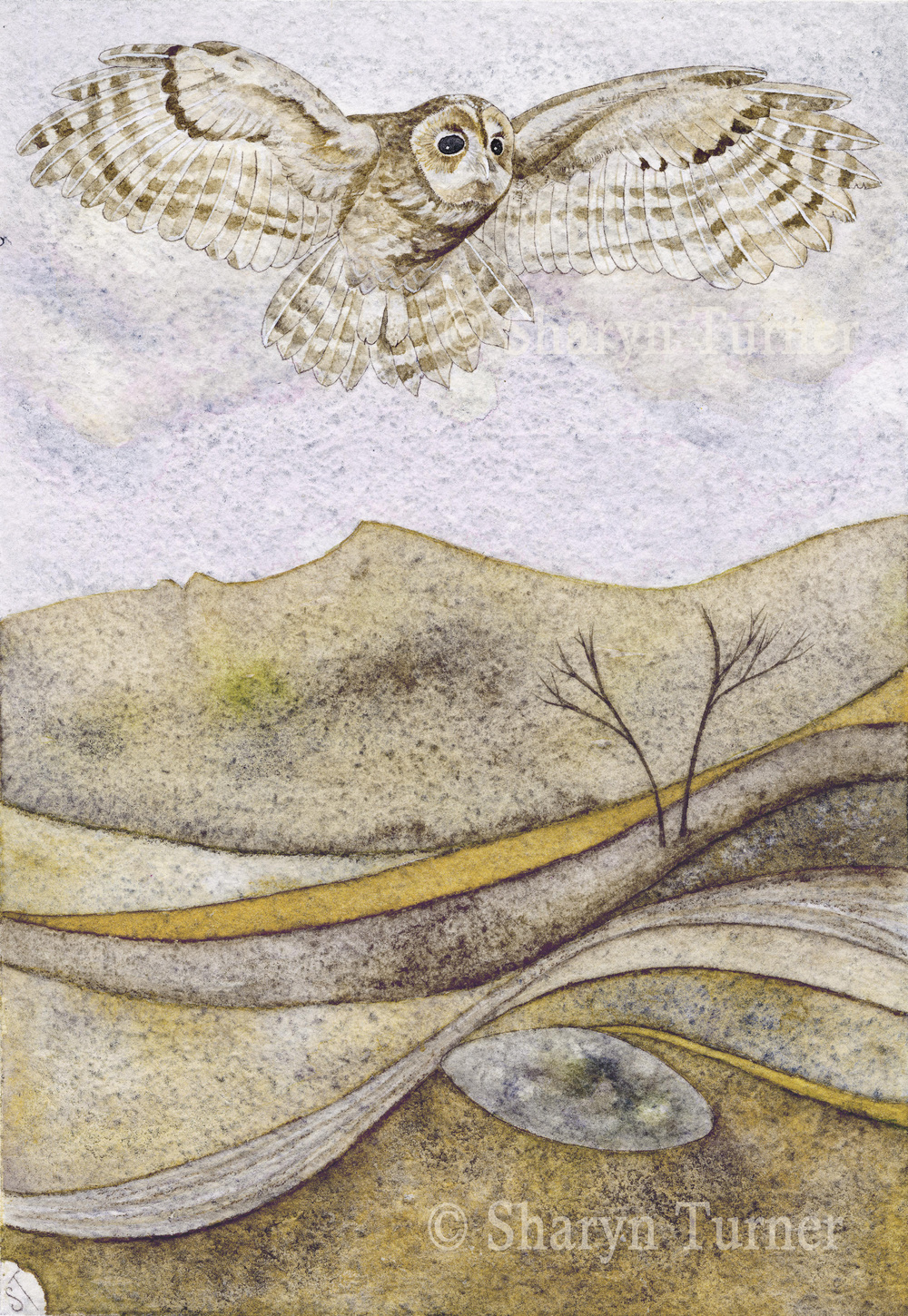The Goddess and the Guardian - (Pen & Ink and Watercolour) © Sharyn Turner 2014