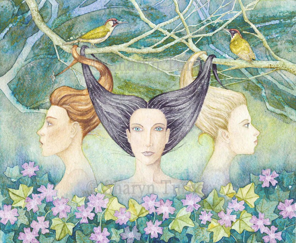 Entangled - (Watercolour) © Sharyn Turner 2015
