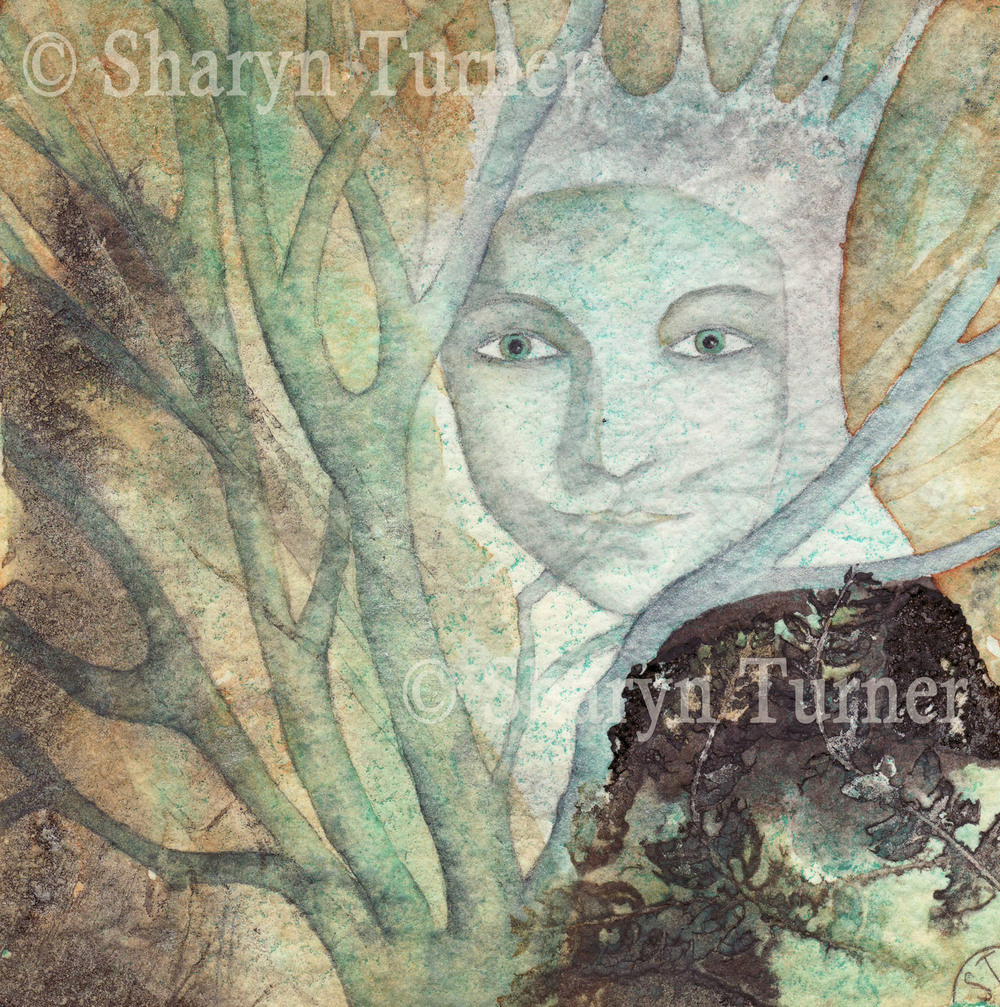 King of the Thicket - (Watercolour & Ink) © Sharyn Turner 2015