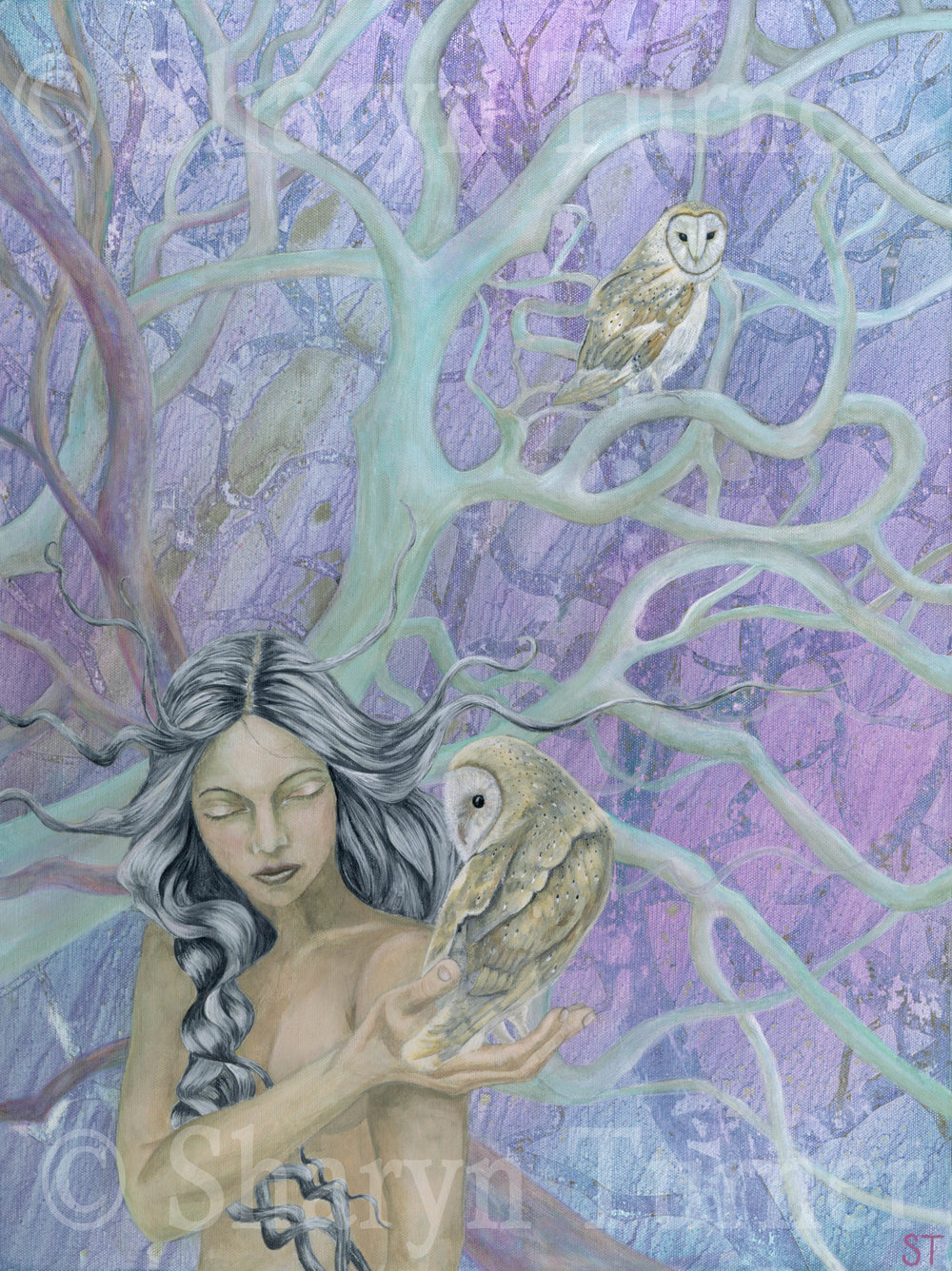 Twilight Messenger (Acrylic on canvas) © Sharyn Turner 2016