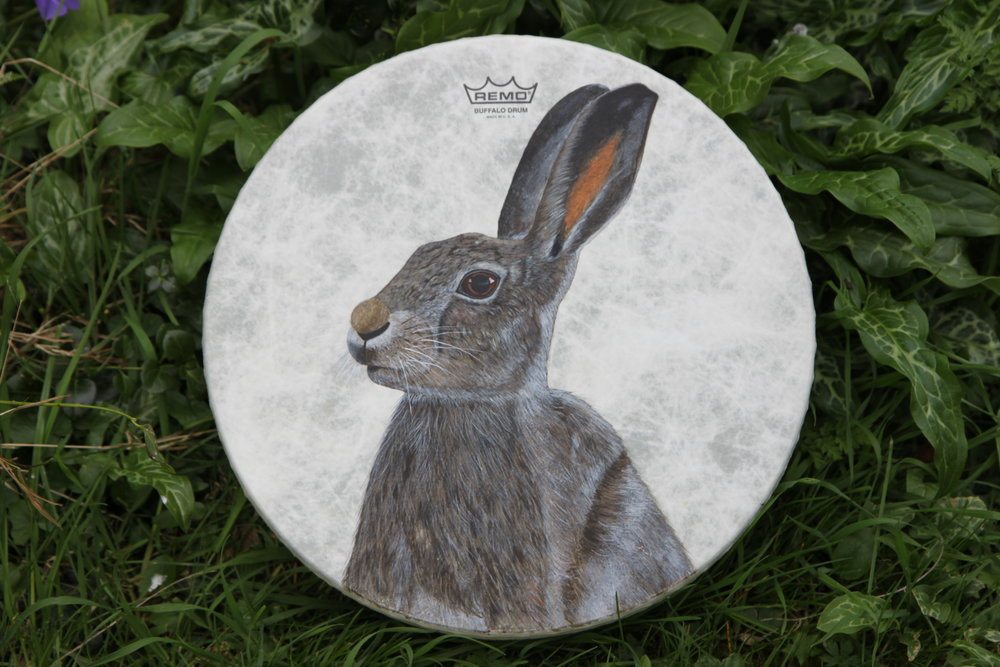 Hare Painted Shamanic Drum - Acrylic on Fibreskyn © Sharyn Turner 2017