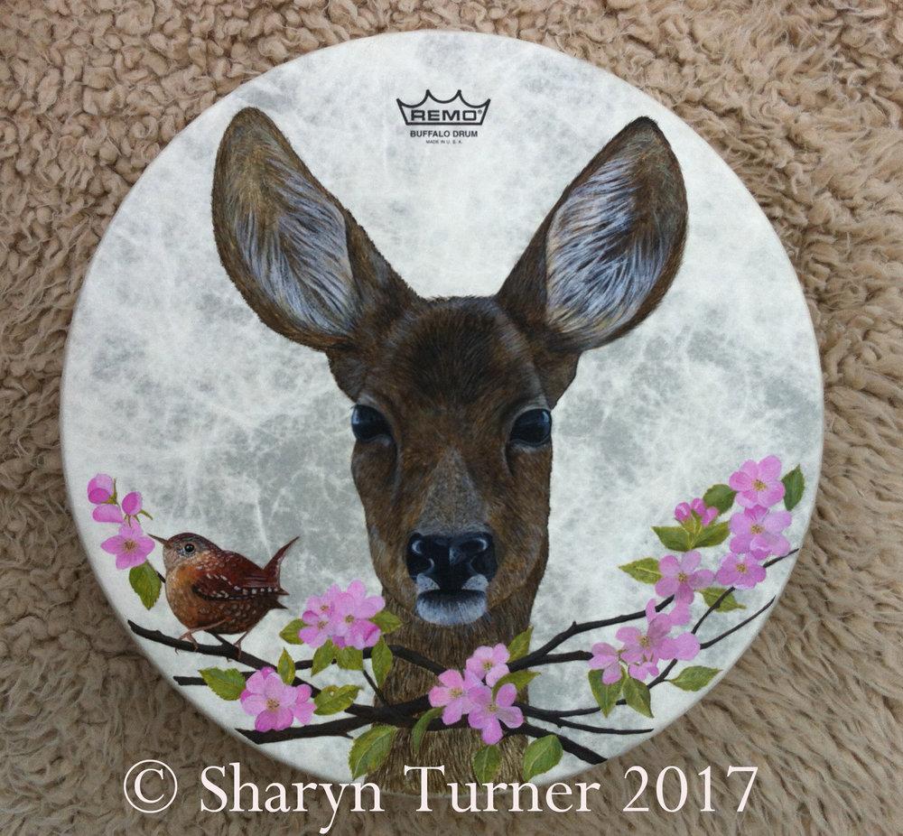 Wren & Doe Painted Drum - (Acrylic on Fibreskyn) © Sharyn Turner 2017