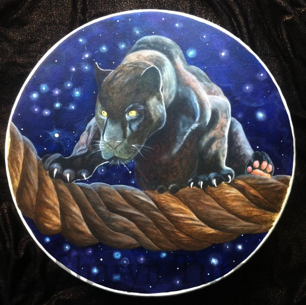 Black Panther Drum - Acrylic on Fibreskyn © Sharyn Turner 2017