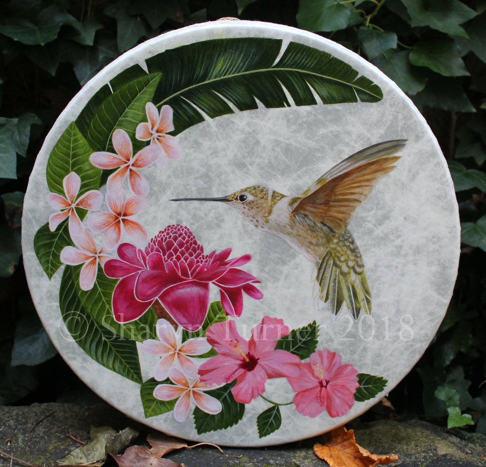Hummingbird & Tropical Flowers Drum - Acrylic on Fibreskyn © Sharyn Turner 2018
