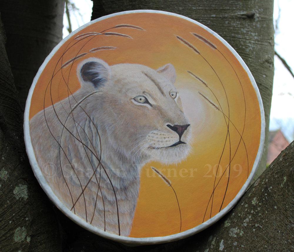 Marah White Lioness Drum - Acrylic on Fibreskyn © Sharyn Turner 2019