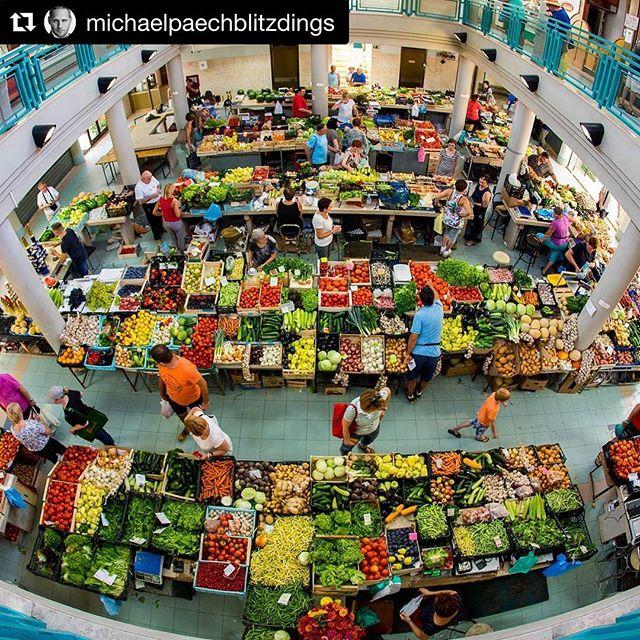 #Repost @michaelpaechblitzdings ・・・ Market in Labin #labin #istria #croatia #fisheye #canon #blitzdings #stadtring