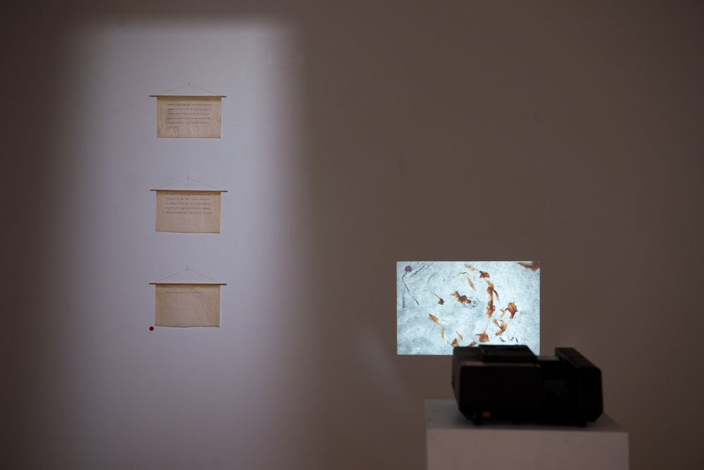 Unswallow , 2016, type written text on mounting tissue with beeswax, 13.0 x 20.0 cm each;  Softminded ,  2016, 14 handmade slides, dimensions variable. Exhibited in The Bends, PhotoAccess, Canberra, 23rd June - 17th July 2016  Photo:  Kon Kudo