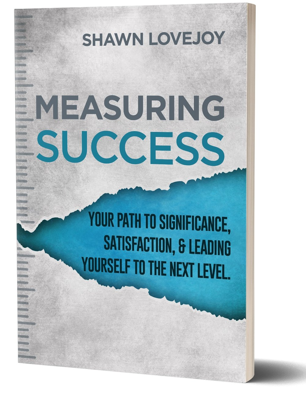 Measuring-Success-Cover-Shawn-Lovejoy