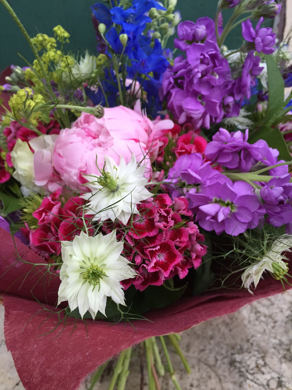 Nigella, Peonies, Sweet William, Stocks, Delphinium and many more.
