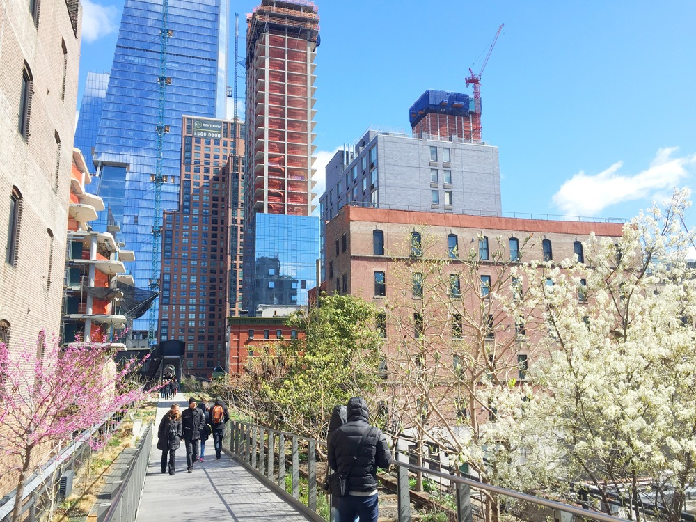The highline, a disused raised railway line through the city which has been lovingly turned into a gorgeous raised walkway.