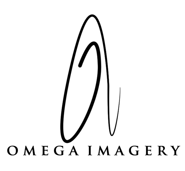 Omega Imagery Wedding Photography New York
