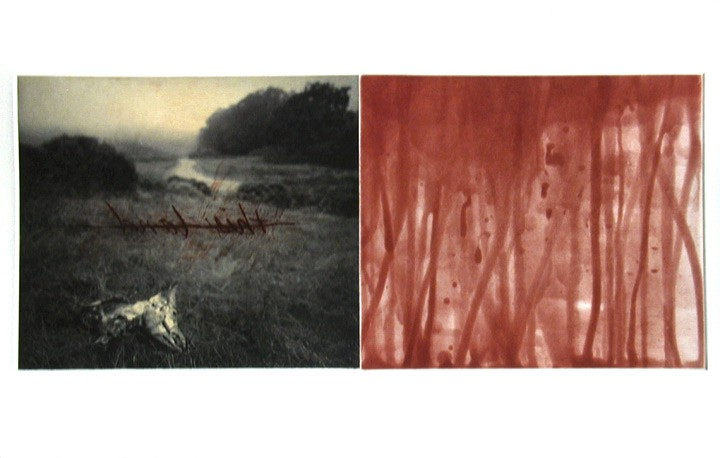 "Holly Morrison, ""This Land"", aquatint, drypoint, chine colle"