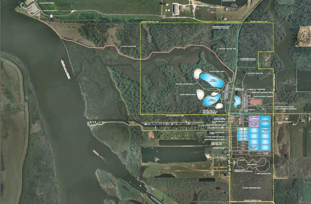 OPT-4-SH-1- Lawton Marine Hatchery Conceptual Plan[2].jpg