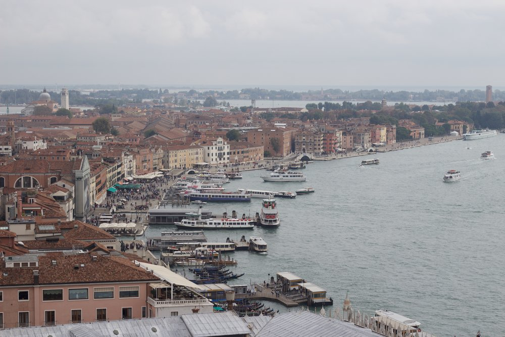 View from the Bell Tower, San Marco's Square, Venice, Italy, Samantha McNeil
