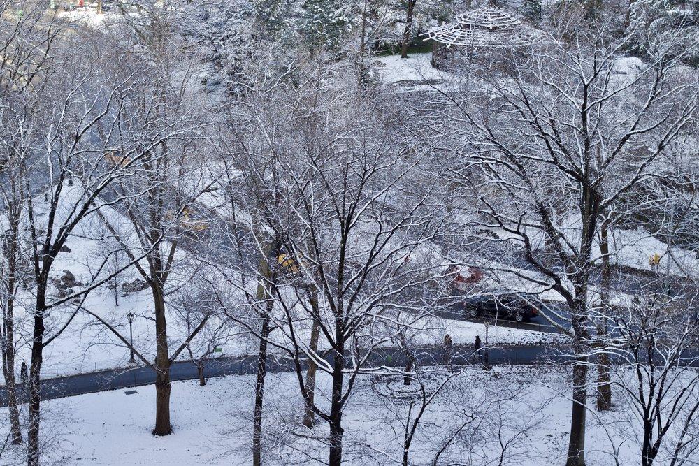 Samantha McNeil Blog // Central Park Snow Day