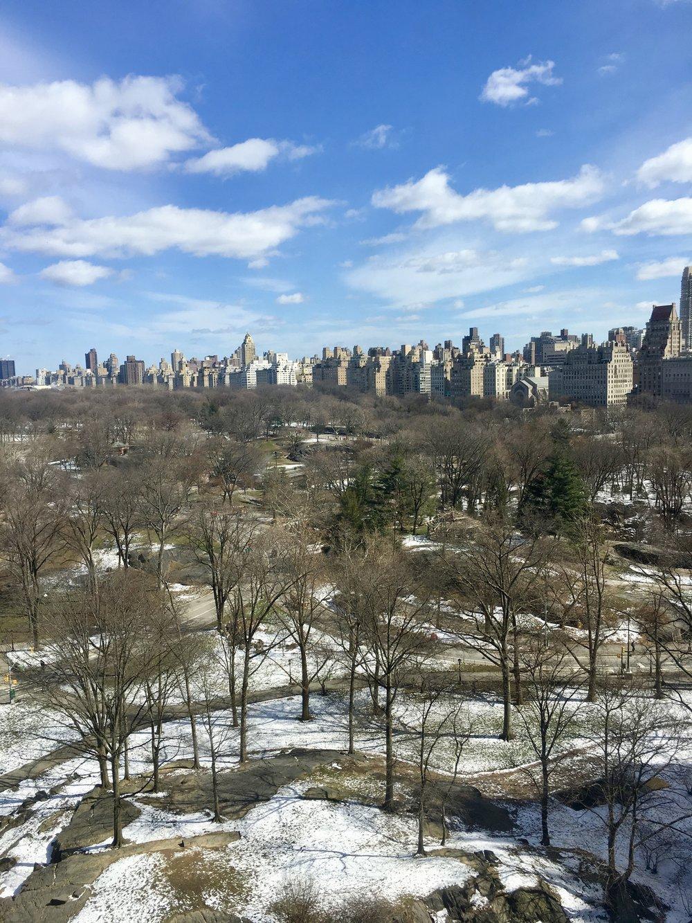 Samantha McNeil Blog // Central Park View from the JW Marriott Essex Rachel