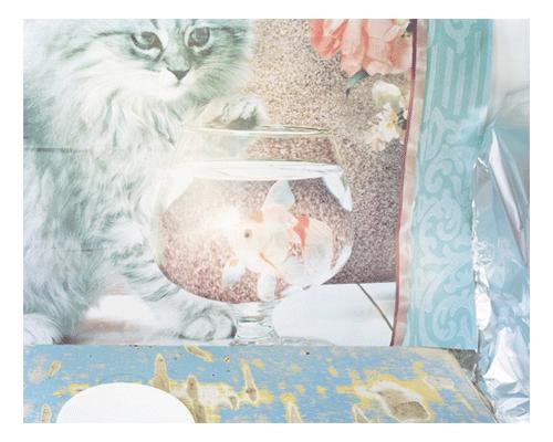 Bailey_Svetlana+-+41.jpg