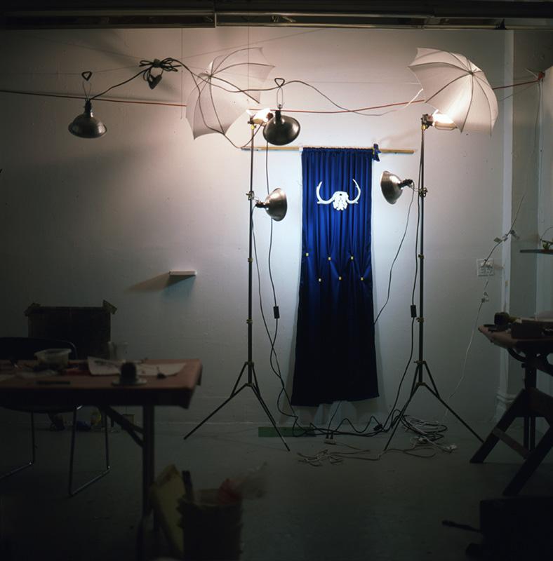 blue_skull.jpg
