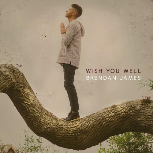 WishYouWell_coverFINAL.jpg