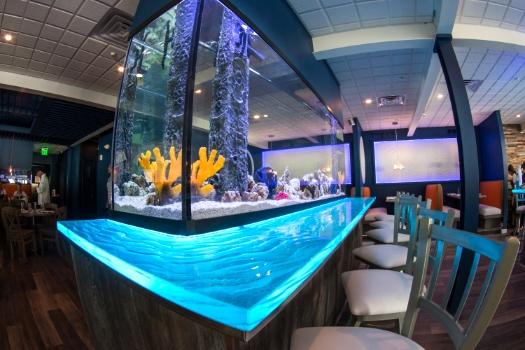 Restaurant Designer LED Aquarium Surround
