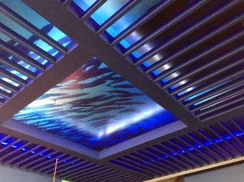 Fins Underwater Ceiling by Raymond Haldeman