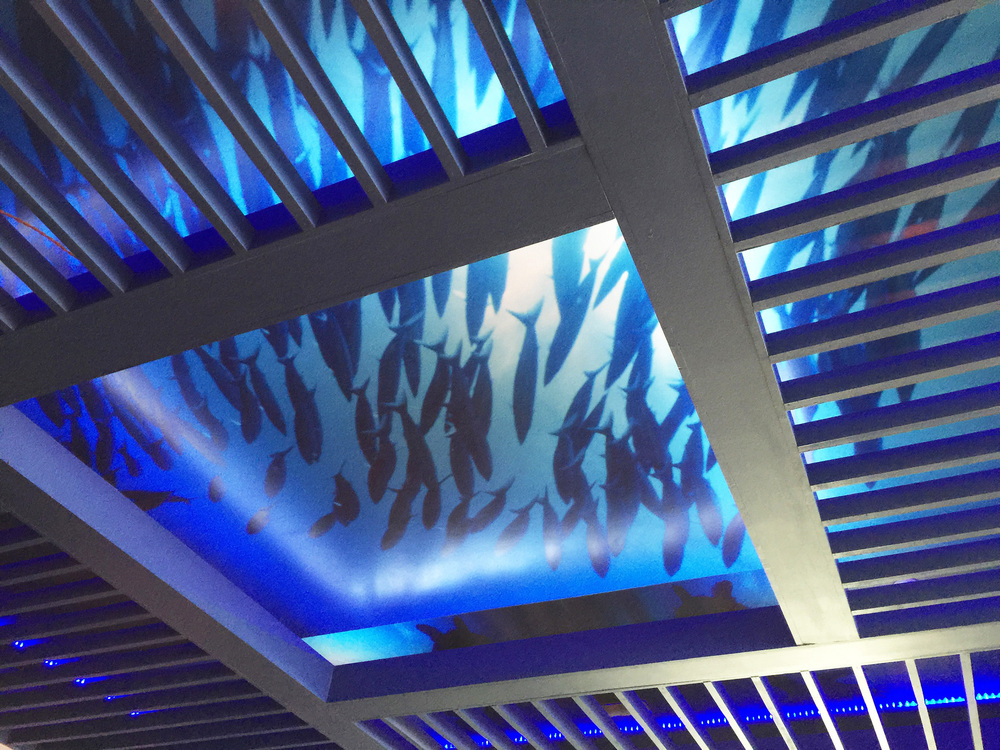UNDERWATER ARBOR CEILING TREATMENT WITH BLACK LIGHT