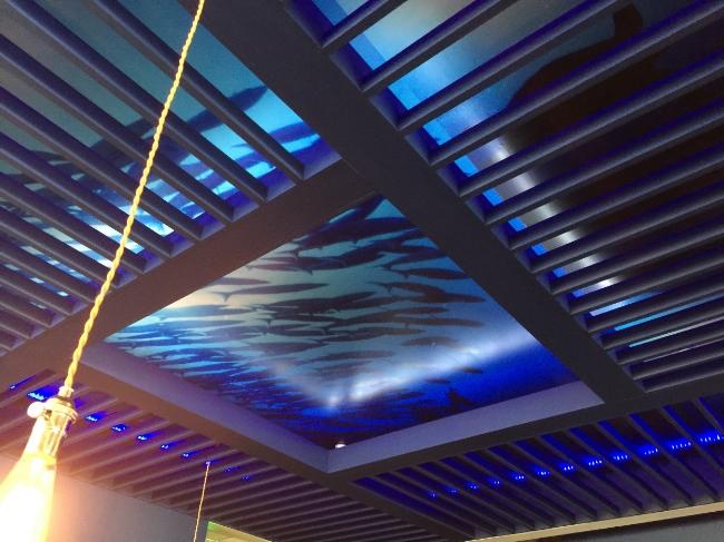 Restaurant Designer Underwater Ceiling