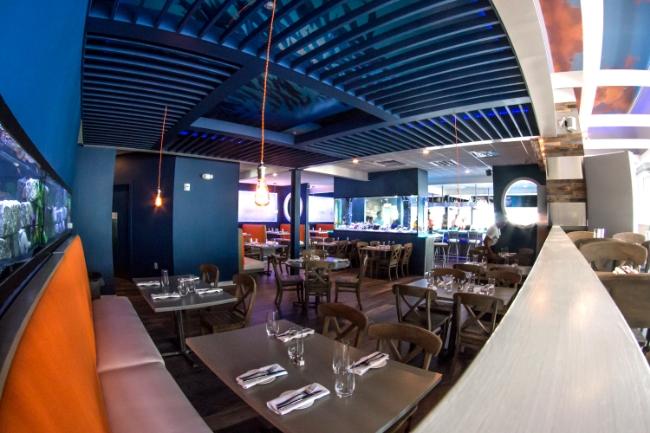 Restaurant Designer Wide Angle