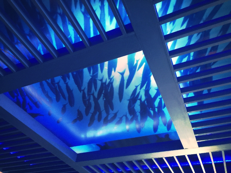 Restaurant Design Effervescent Underwater Ceiling