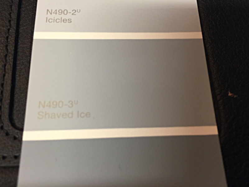 "Gray Wall Color HOME DEPOT BEHR ""SHAVED ICE N490-3  ""FLAT ONLY""!!!"