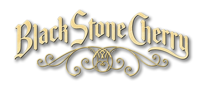 Image result for black stone cherry