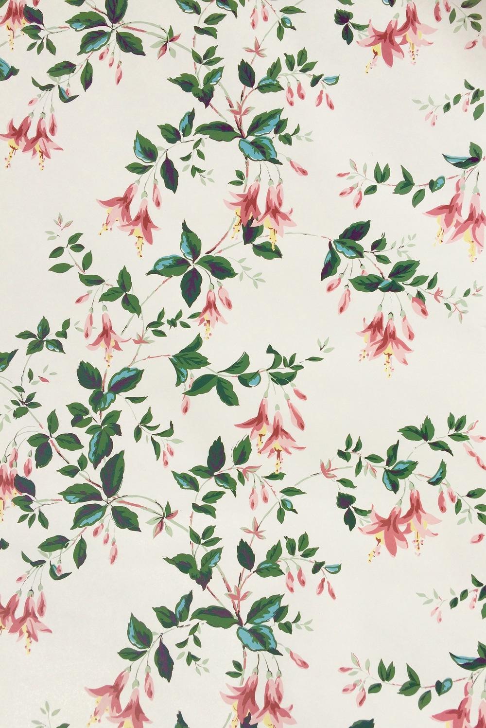 FullSizeRender Fuchsia.jpg