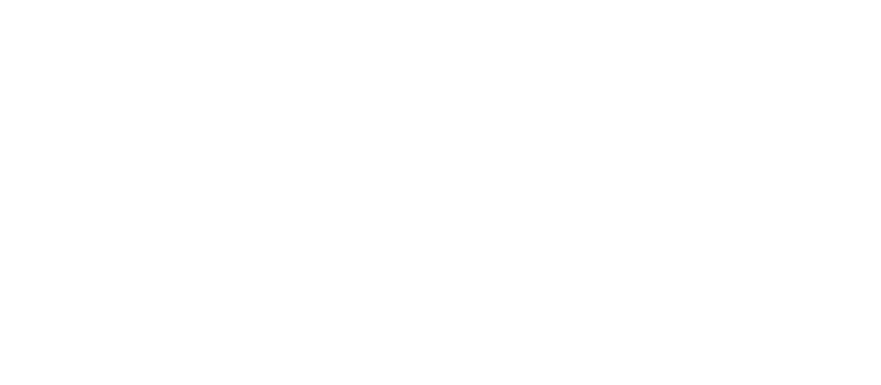 VAGRANT SKATEBOARDS
