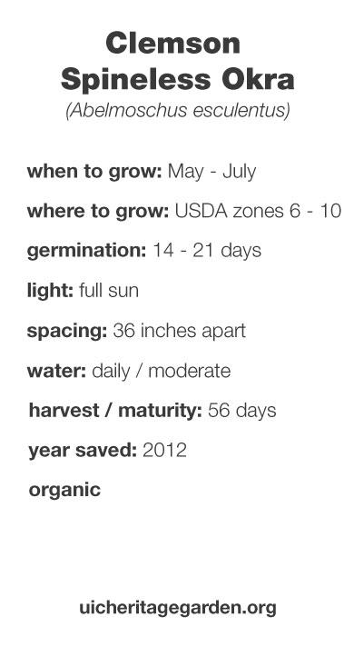 Clemson Spineless Okra growing information