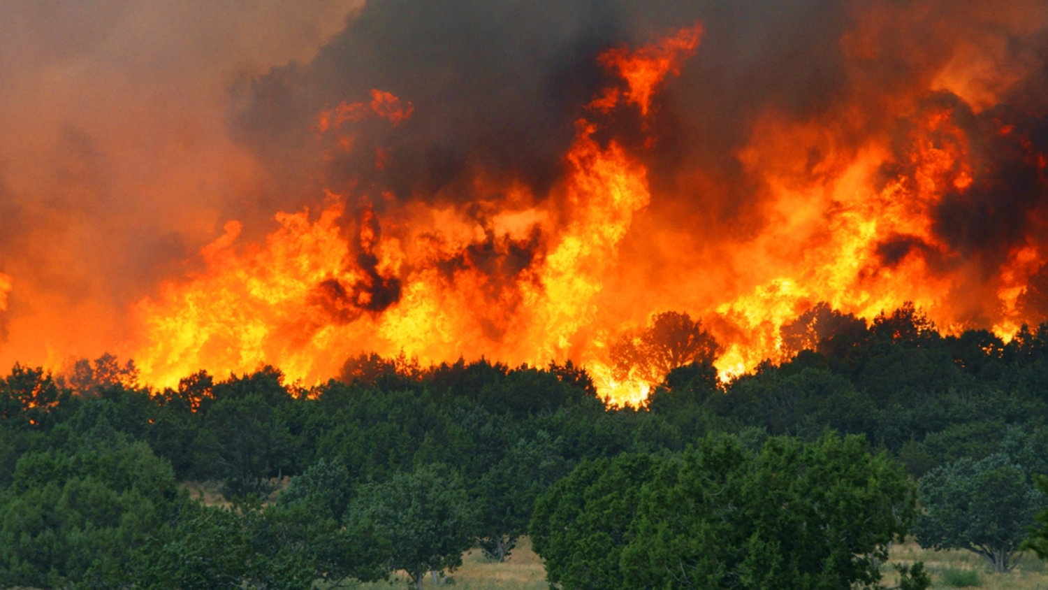 showing extreme fire behavior - HD1500×844