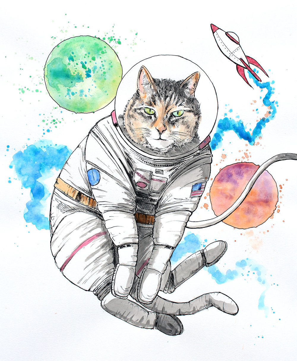 spacecatjpeg.jpg