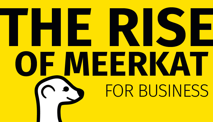 The Rise of Meerkat For Business