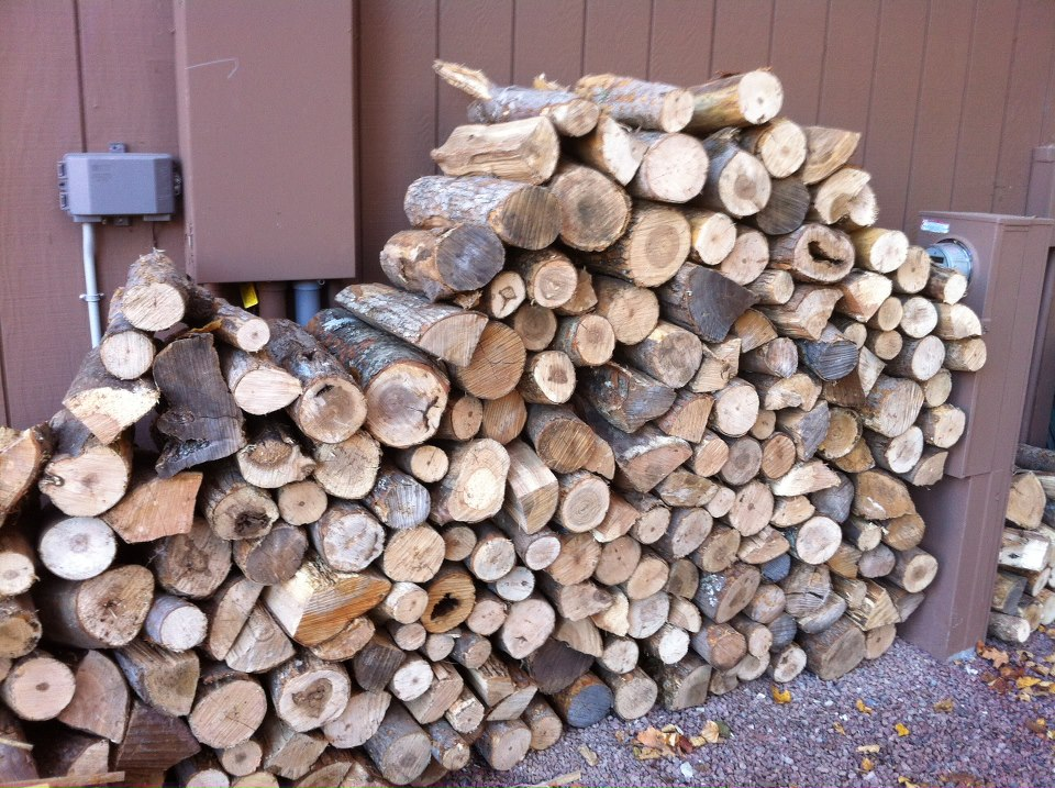 Our well-stocked woodpile.