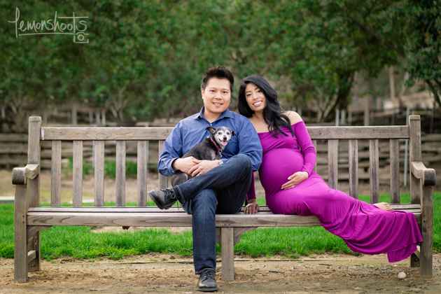 Copy of expecting couple with their dog sitting on a bench at hap magee park