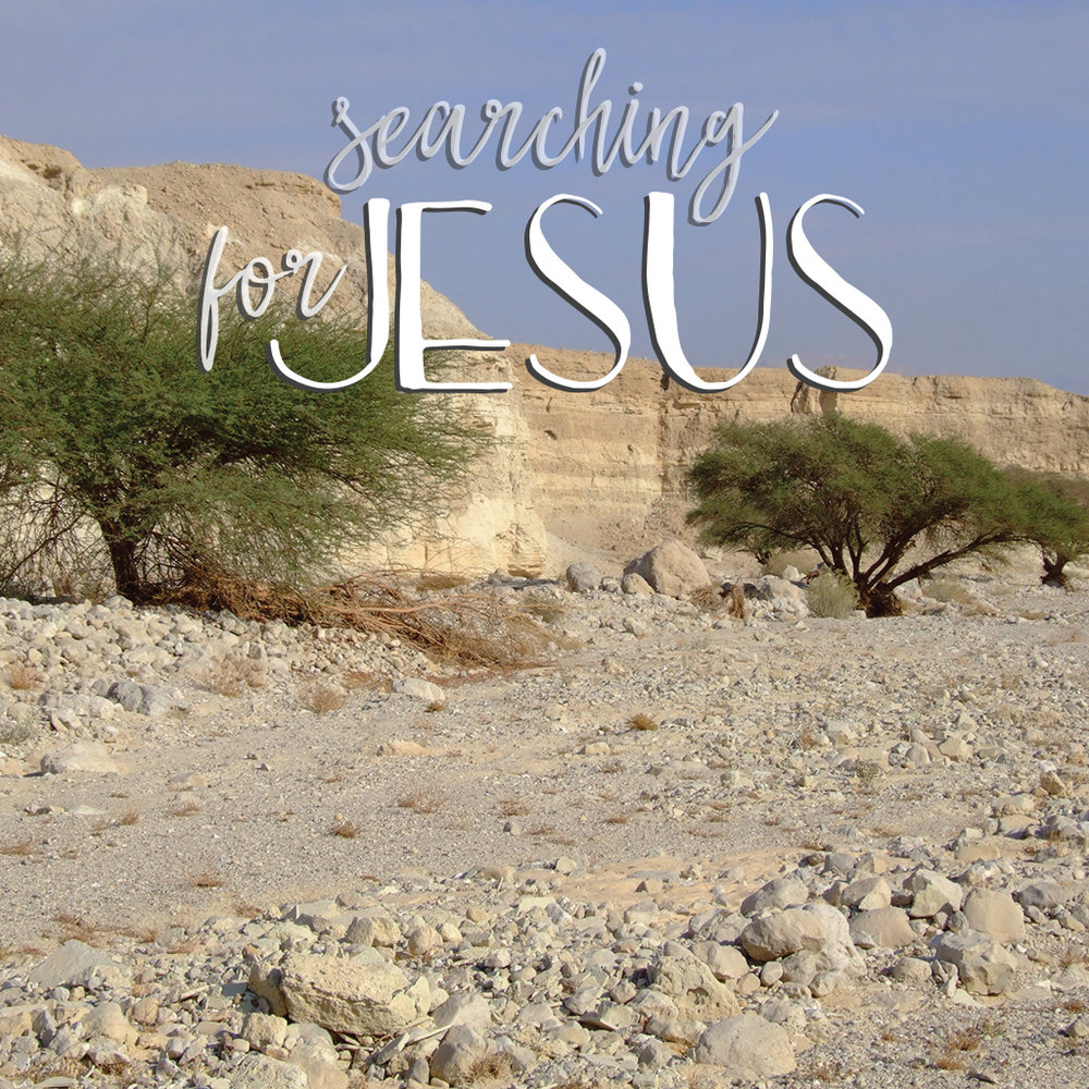 SEARCHING FOR JESUS #BreadOfLife Jan 15, 2017 Study Guide