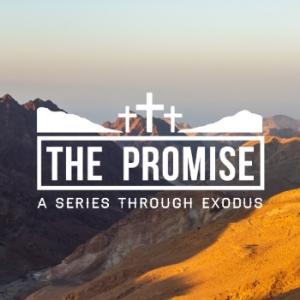 The-Promise.jpg