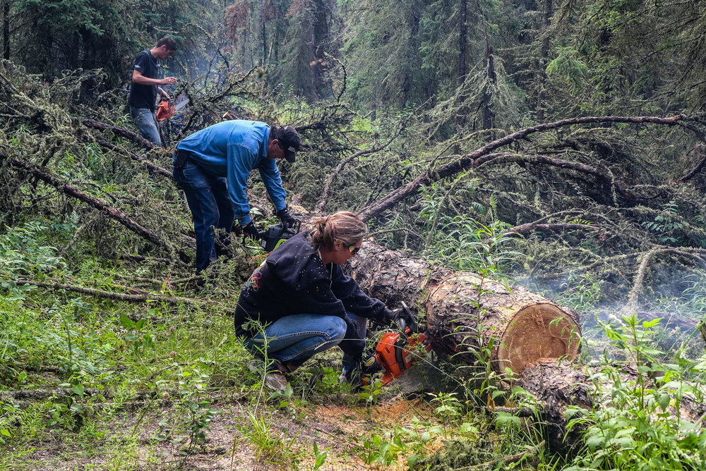 The Golosky family clearing a down tree, July 2014. The Golosky family owns traplines near Fort McMurray that have been passed down through the generations.