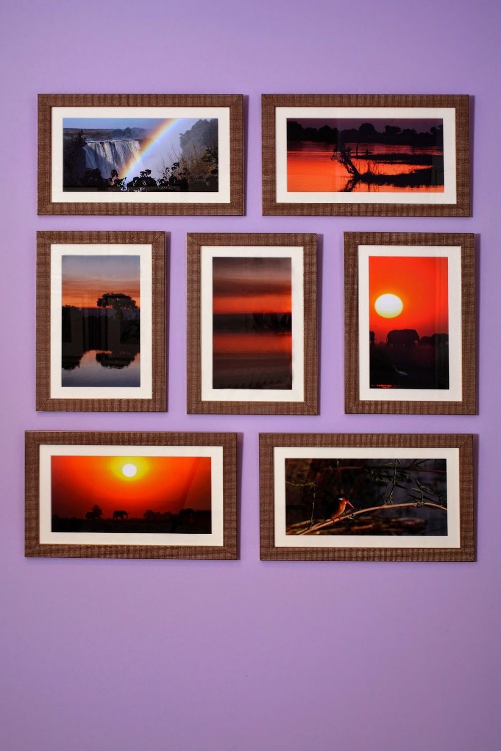 purple.wall.photography.gallery