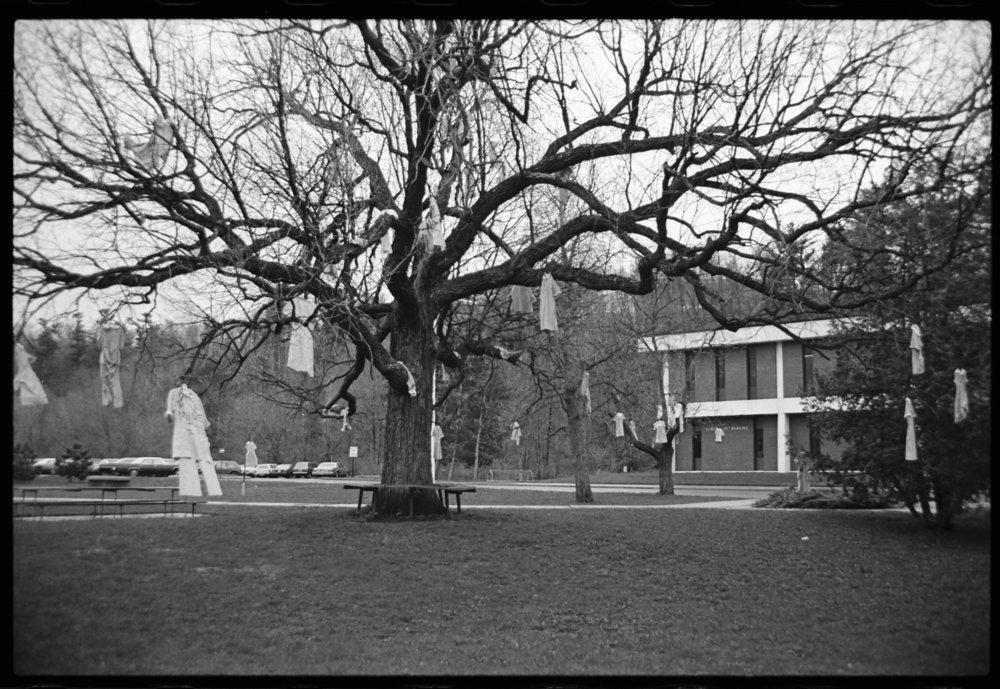 Nursing uniforms hanging in the tree