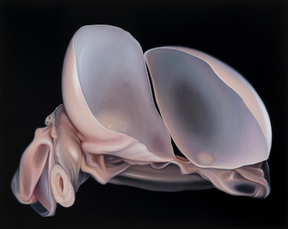 Untitled, 2014. Oil on board, 30 x 38 cm
