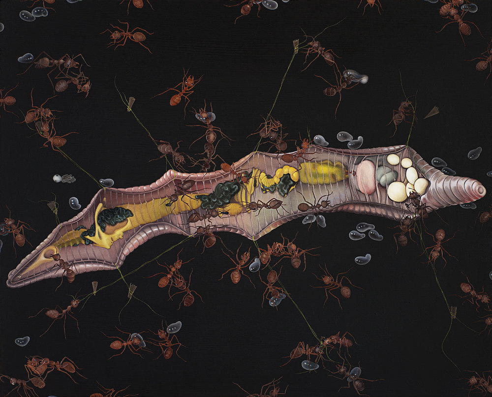 Untitled, 2009. Oil on board, 25 x 30 cm