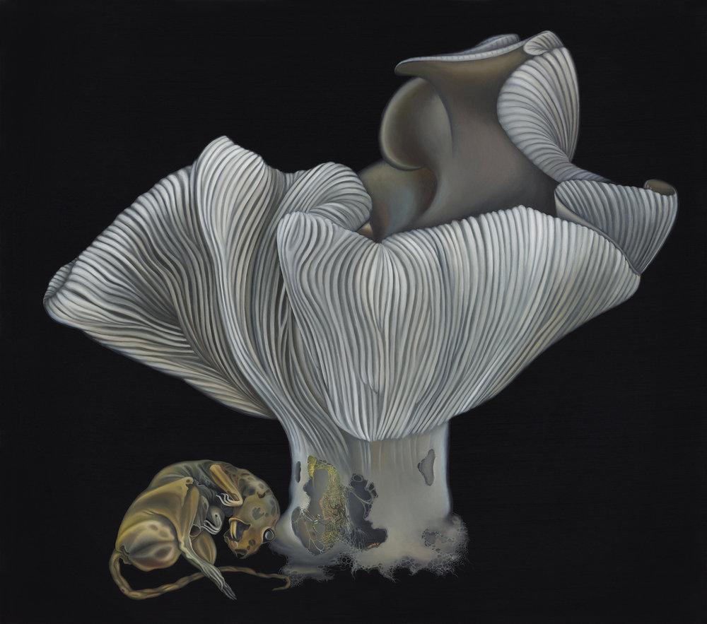 Untitled, 2013. Oil on board, 30 x 34 cm
